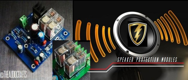 Speaker Protection Modules